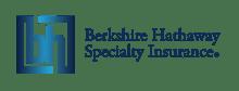 BHSI Logo  - FINAL R